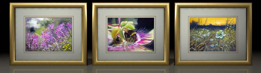Rosebay Willowherb    Passion Flower Bees    Sunset Chamomile